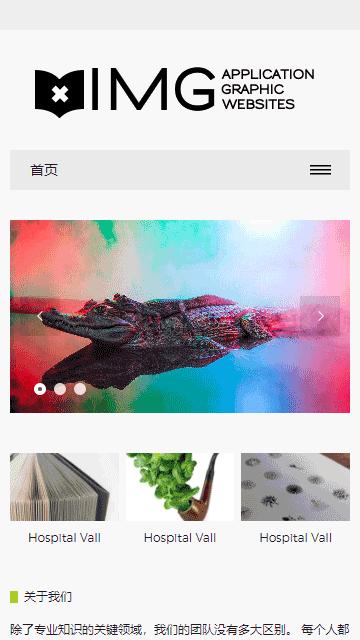 响应式简约轻型摄影相册杂志画册设计公司网站源码